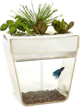 Набор для растений и ухода за рыбкой AQUAFARM