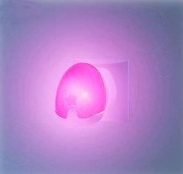 Сенсорный ночник Pabobo