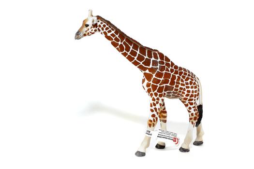 Детеныш жирафа SCHLEICH