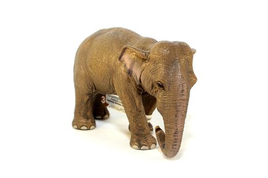 Азиатский слон, самка SCHLEICH