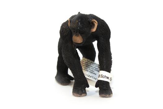 Шимпанзе, самец SCHLEICH