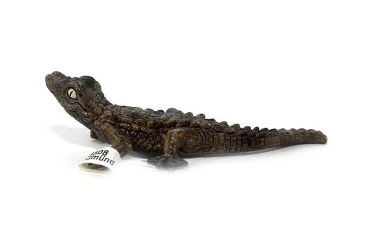 Крокодил, детёныш SCHLEICH