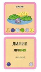Набор карточек Первые слова, 205 шт. Знаток